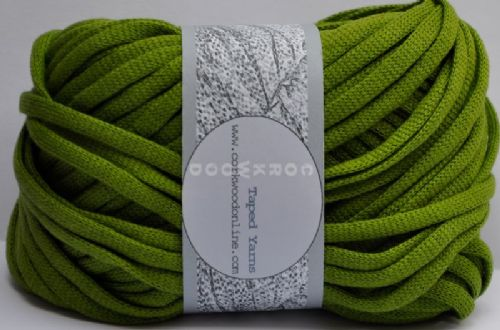 Spring Green cotton Chunky Tape yarn 100g ball